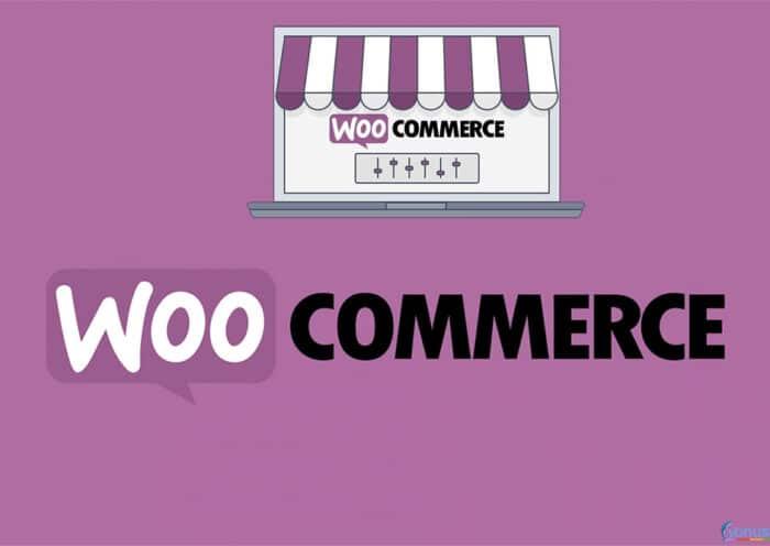 woocommerce-Hide-Shipping-Methods-Eklentisi